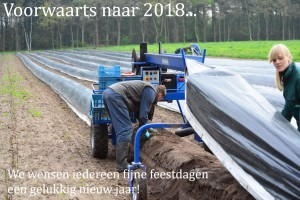 2017 Asperge spin oogst